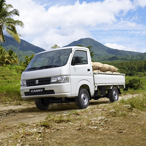 Suzuki Carry Exterior