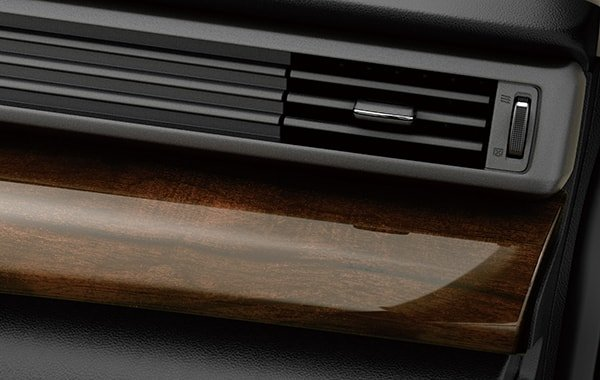 Suzuki Ertiga Woodgrain design on interior panels(GLX)